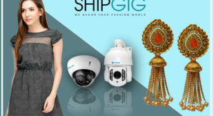 'SHIPGIG' An Emerging E-commerce website in India | Shipgig.com