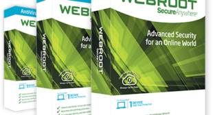 Webroot causing windows 10 problems