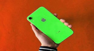 Apple's 2019 iPhone XR now in new shades- green and lavender colors