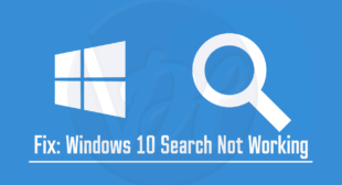 What to Do When 'Windows Search Not Working' on Windows 10?