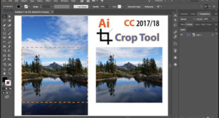 How to Crop an Image in Adobe Illustrator? – mcafee.com/activate