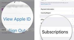 How to Cancel App Store Subscriptions Through iTunes and iOS