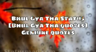 Kyun Bhul Gya Tha Status