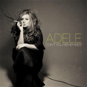 Don't You Remember Lyrics – Adele | 21 | Lyricsmin.com