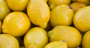 Order Online Organic Lemon Suppliers in Mexico