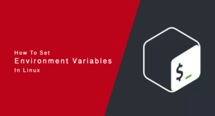 How to Set Environment Variables in Bash on Linux
