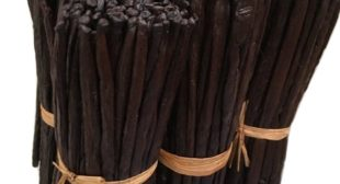 Buy Vanilla Beans at Wholesale Prices