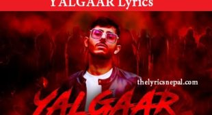 CARRYMINATI X Wily Frenzy – YALGAAR (Lyrics) – The Lyrics Nepal