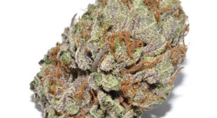 Buy weed in uk, Online shipping uk, Afghan Kush Strain for sale UK