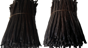Best quality Tahitian vanilla beans at wholesale prices