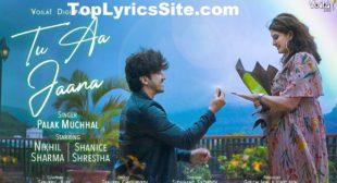 Tu Aa Jaana Lyrics – Palak Muchhal – TopLyricsSite.com