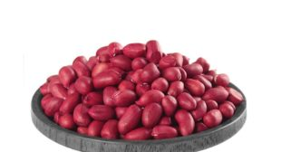 Buy Bulk Wholesale Redskin Peanuts Online in UK