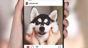 Best Instagram Apps That Can be Used to Amplify Your Posts
