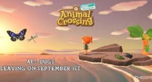 Animal Crossing: New Horizons – All the New Bugs in September Month
