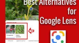 Best Google Lens Alternatives in 2020