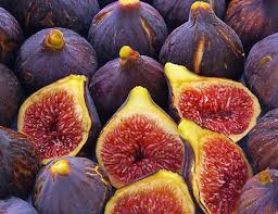Place order online fig distributors at wholesale prices