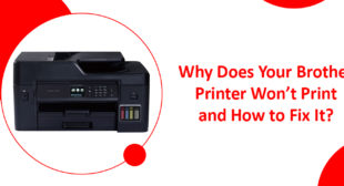 How to fix Brother Printer won't print issue?