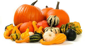 Easily order online Squash distributors at affordable rates