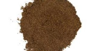 Organic Vanilla bean powder sell online