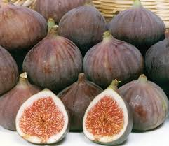Purchase Fresh Figs from Supplier & Try Savory and Sweet Dishes at Home