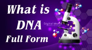 DNA Full Form | What is DNA Full Form in Medical