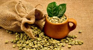 How Green Coffee Makes You Lose Weight?