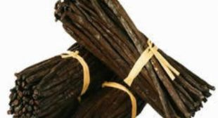Buy Vanilla Beans Online at Wholesale Rates to Get Myriad Health Benefits