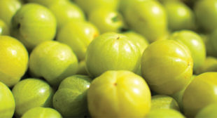 Get Amazing Benefits Of Amla Capsules For Better Health