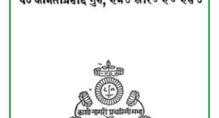 Hindi Vyakaran (हिंदी व्याकरण) PDF – Pt. Kamtaprasad Guru